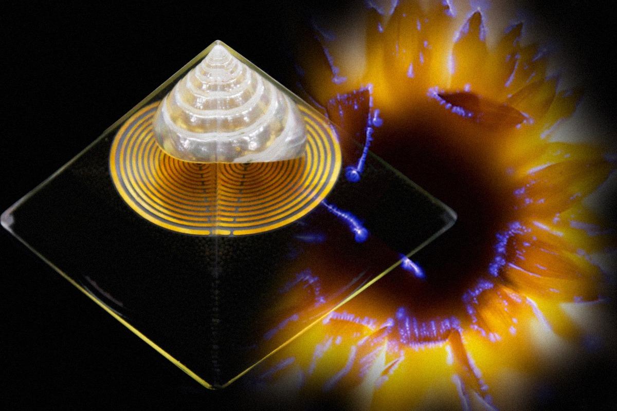 cosmic orgone energy of ether - orgonodrome c