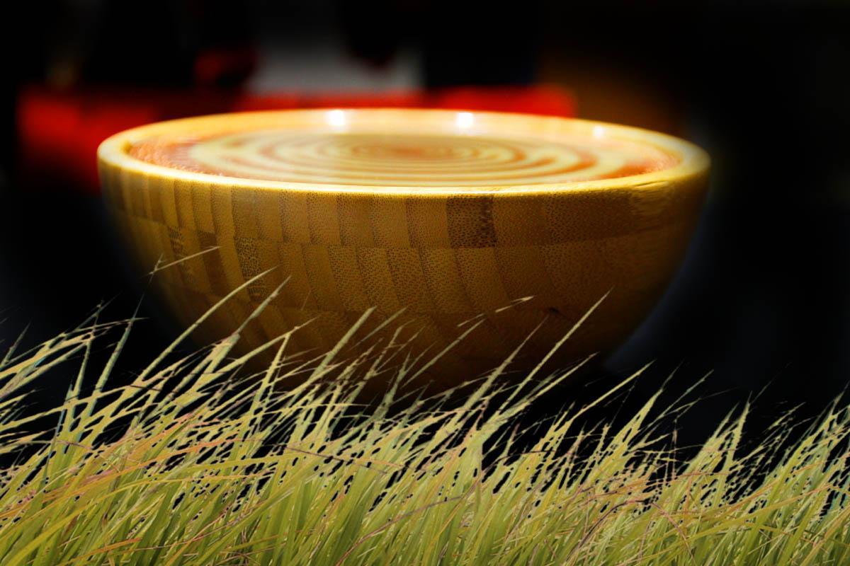AgriFarm Bamboo MWO 3