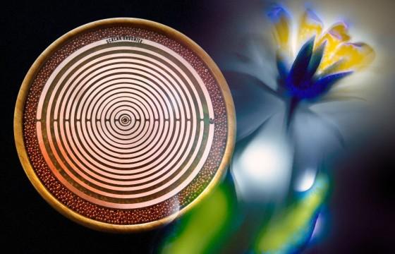 Bamboo MWO SCALAR orgonodrom