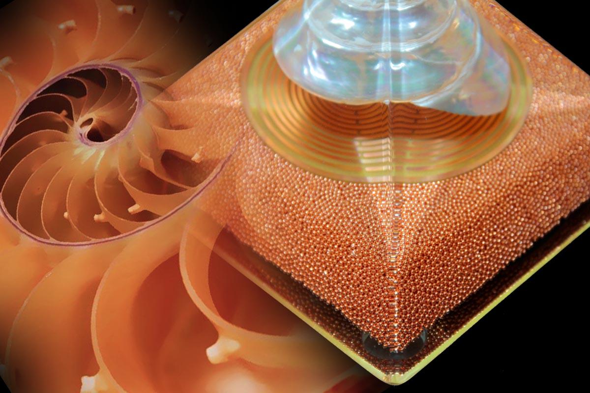 MWO SHELL - orgonite- ionites-orgonodrome (3)