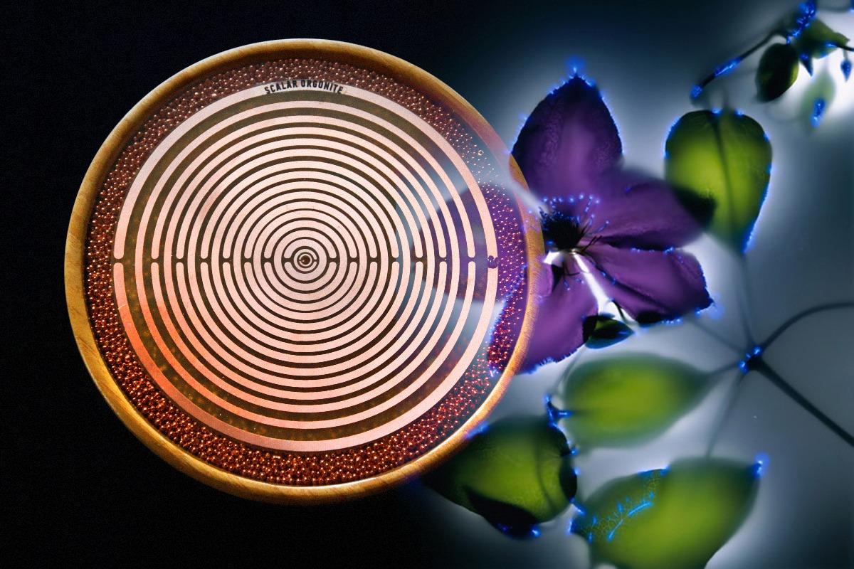 cosmic orgone energy of ether - orgonodrome AgriFarm Bamboo MWO