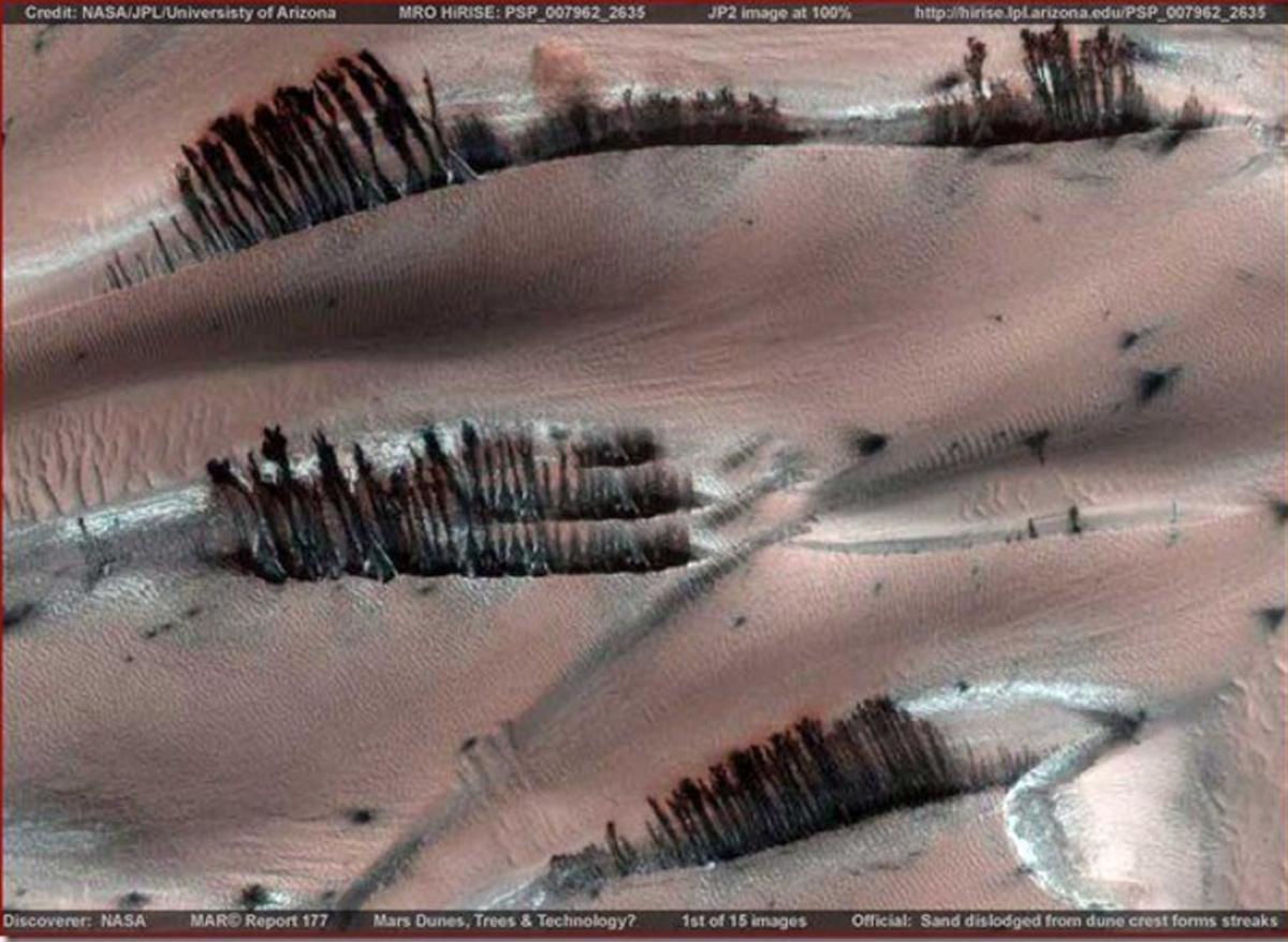 MARS LIFE terrapapers (2)